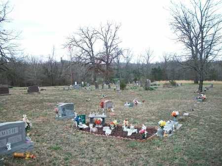 *LOCUST CEMETERY OVERVIEW,  - Marion County, Arkansas    *LOCUST CEMETERY OVERVIEW - Arkansas Gravestone Photos