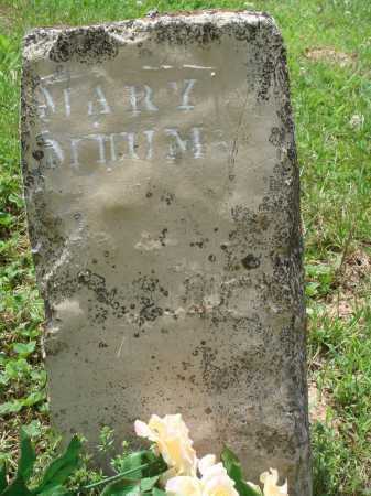 MILUM, MARY - Marion County, Arkansas   MARY MILUM - Arkansas Gravestone Photos