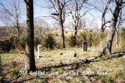 *OLD BUFFALO CEMETERY,  - Marion County, Arkansas |  *OLD BUFFALO CEMETERY - Arkansas Gravestone Photos
