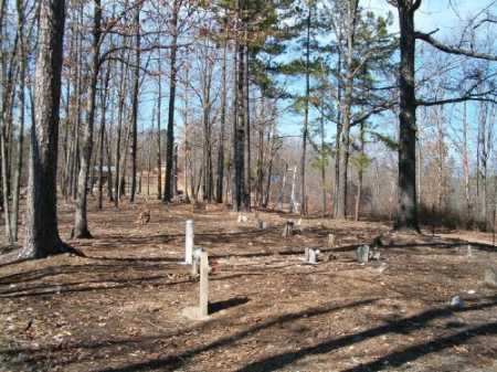 *ELM SPRINGS OVERVIEW,  - Marion County, Arkansas    *ELM SPRINGS OVERVIEW - Arkansas Gravestone Photos