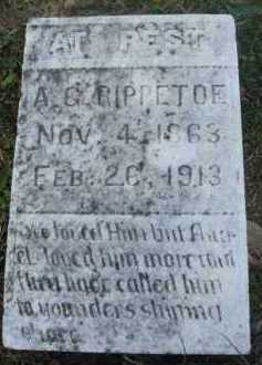 RIPPETOE, A. G. - Marion County, Arkansas | A. G. RIPPETOE - Arkansas Gravestone Photos