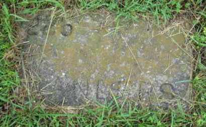 SANDERS, (NO FIRST NAME LISTED) - Marion County, Arkansas | (NO FIRST NAME LISTED) SANDERS - Arkansas Gravestone Photos