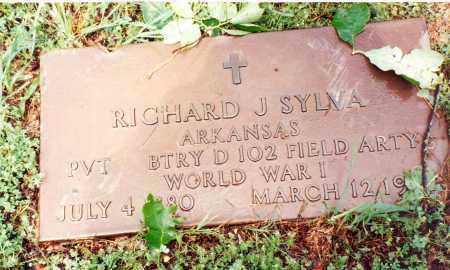SYLVA  (VETERAN WWI), RICHARD J - Marion County, Arkansas | RICHARD J SYLVA  (VETERAN WWI) - Arkansas Gravestone Photos