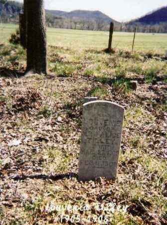 TILLEY, LOUVENIE - Marion County, Arkansas | LOUVENIE TILLEY - Arkansas Gravestone Photos