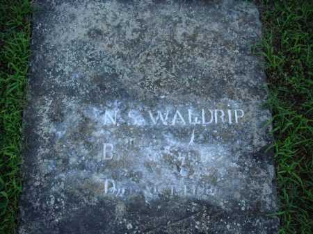 WALDRIP, N. S. - Marion County, Arkansas | N. S. WALDRIP - Arkansas Gravestone Photos