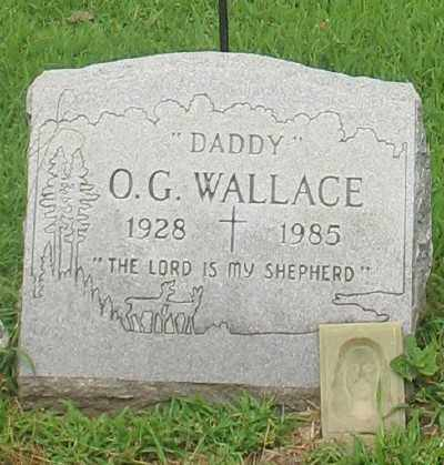 WALLACE, O. G. - Marion County, Arkansas | O. G. WALLACE - Arkansas Gravestone Photos