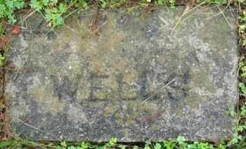 WELLS, (NO FIRST NAME LISTED) - Marion County, Arkansas | (NO FIRST NAME LISTED) WELLS - Arkansas Gravestone Photos