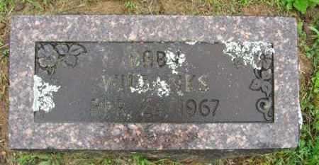 WILBANKS, BABY - Marion County, Arkansas   BABY WILBANKS - Arkansas Gravestone Photos