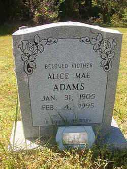 ADAMS, ALICE MAE - Miller County, Arkansas | ALICE MAE ADAMS - Arkansas Gravestone Photos