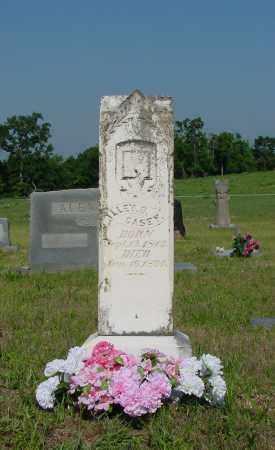 CASEY, ALLEY B - Miller County, Arkansas   ALLEY B CASEY - Arkansas Gravestone Photos