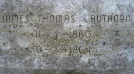 CAUTHORN, JAMES THOMAS - Miller County, Arkansas | JAMES THOMAS CAUTHORN - Arkansas Gravestone Photos
