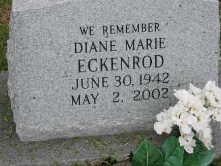 ECKENROD, DIANE MARIE - Miller County, Arkansas   DIANE MARIE ECKENROD - Arkansas Gravestone Photos