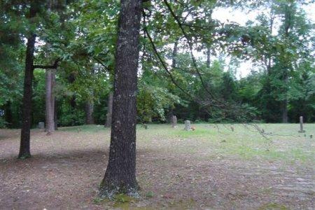 *OVERVIEW, . - Miller County, Arkansas | . *OVERVIEW - Arkansas Gravestone Photos
