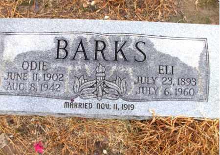 BARKS, ELI - Mississippi County, Arkansas | ELI BARKS - Arkansas Gravestone Photos