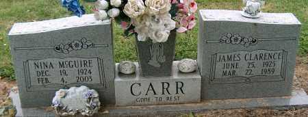 CARR, NINA - Mississippi County, Arkansas | NINA CARR - Arkansas Gravestone Photos