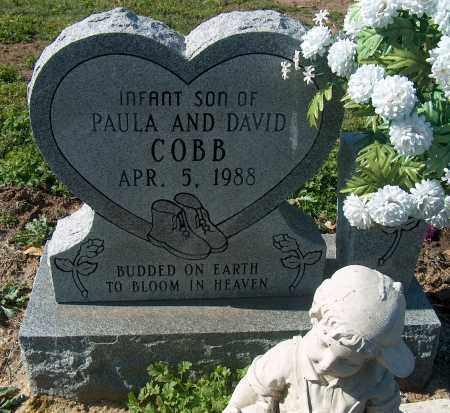 COBB, INFANT SON - Mississippi County, Arkansas | INFANT SON COBB - Arkansas Gravestone Photos