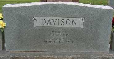 DAVISON, LEMOIN - Mississippi County, Arkansas | LEMOIN DAVISON - Arkansas Gravestone Photos