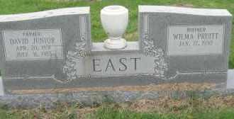 EAST, DAVID JUNIOR - Mississippi County, Arkansas | DAVID JUNIOR EAST - Arkansas Gravestone Photos