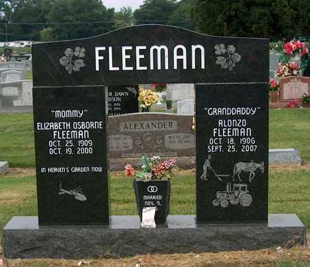 FLEEMAN, ALONZO - Mississippi County, Arkansas | ALONZO FLEEMAN - Arkansas Gravestone Photos