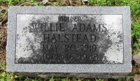 ADAMS HALSTEAD, WILLIE - Mississippi County, Arkansas | WILLIE ADAMS HALSTEAD - Arkansas Gravestone Photos