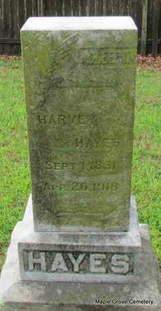 HAYES, HARVEY - Mississippi County, Arkansas | HARVEY HAYES - Arkansas Gravestone Photos