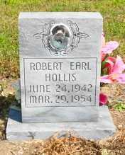 HOLLIS, ROBERT EARL - Mississippi County, Arkansas | ROBERT EARL HOLLIS - Arkansas Gravestone Photos