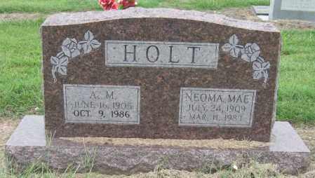 HOLT, A M - Mississippi County, Arkansas | A M HOLT - Arkansas Gravestone Photos