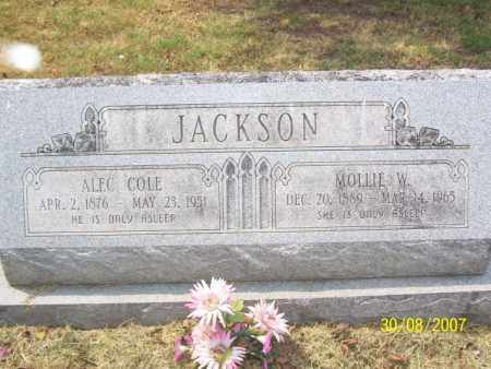 JACKSON, MOLLY ELIZABETH - Mississippi County, Arkansas | MOLLY ELIZABETH JACKSON - Arkansas Gravestone Photos