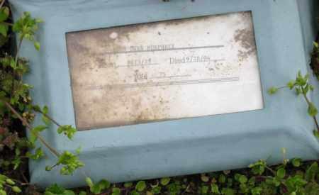 MURPHREE, LEON OWEN - Mississippi County, Arkansas | LEON OWEN MURPHREE - Arkansas Gravestone Photos