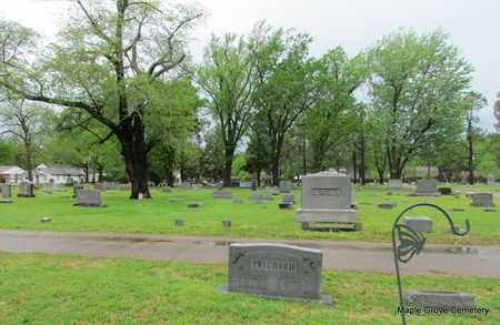*OVERVIEW,  - Mississippi County, Arkansas |  *OVERVIEW - Arkansas Gravestone Photos