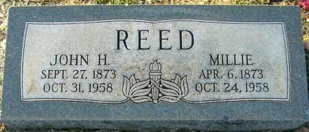 REED, MILLIE - Mississippi County, Arkansas | MILLIE REED - Arkansas Gravestone Photos