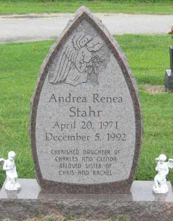 STAHR, ANDREA RENEA - Mississippi County, Arkansas | ANDREA RENEA STAHR - Arkansas Gravestone Photos