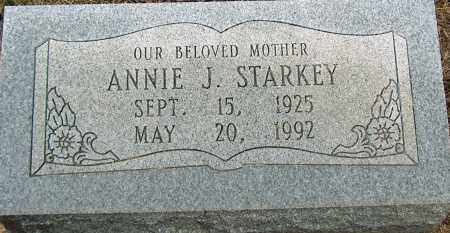 STARKEY, ANNIE J - Mississippi County, Arkansas | ANNIE J STARKEY - Arkansas Gravestone Photos