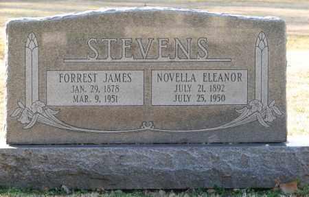 STEVENS, FORREST JAMES - Mississippi County, Arkansas | FORREST JAMES STEVENS - Arkansas Gravestone Photos