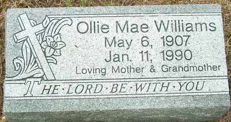 WILLIAMS, OLLIE MAE - Mississippi County, Arkansas | OLLIE MAE WILLIAMS - Arkansas Gravestone Photos
