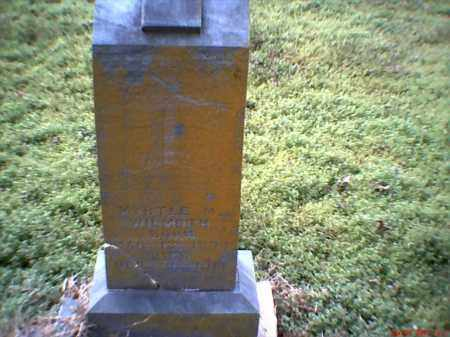 WILMOTH, MYRTLE MAY - Mississippi County, Arkansas | MYRTLE MAY WILMOTH - Arkansas Gravestone Photos