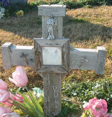 WOLF, JOSPH N - Mississippi County, Arkansas | JOSPH N WOLF - Arkansas Gravestone Photos
