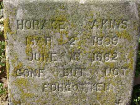 AKINS, HORACE - Monroe County, Arkansas | HORACE AKINS - Arkansas Gravestone Photos