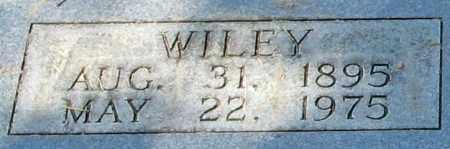CRISP, WILEY SR - Monroe County, Arkansas   WILEY SR CRISP - Arkansas Gravestone Photos