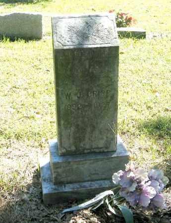 CRISP, WILLIAM JOEL - Monroe County, Arkansas | WILLIAM JOEL CRISP - Arkansas Gravestone Photos