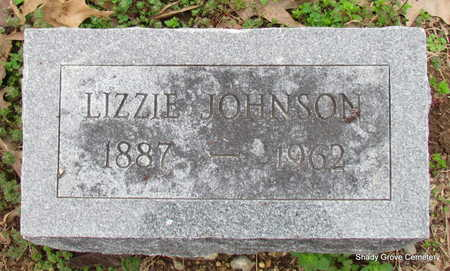 JOHNSON, LIZZIE - Monroe County, Arkansas   LIZZIE JOHNSON - Arkansas Gravestone Photos