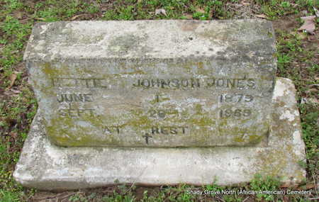 JOHNSON JONES, HETTIE - Monroe County, Arkansas | HETTIE JOHNSON JONES - Arkansas Gravestone Photos