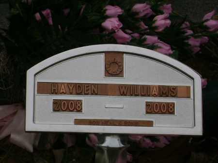 WILLIAMS, HAYDEN - Monroe County, Arkansas | HAYDEN WILLIAMS - Arkansas Gravestone Photos