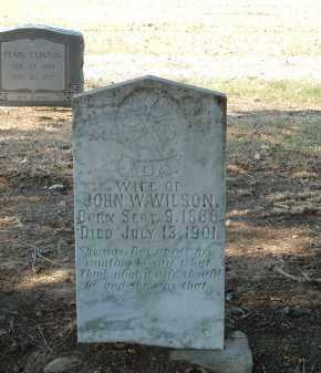 WILSON, IDA - Monroe County, Arkansas | IDA WILSON - Arkansas Gravestone Photos