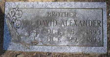 ALEXANDER, WM  DAVID - Montgomery County, Arkansas | WM  DAVID ALEXANDER - Arkansas Gravestone Photos