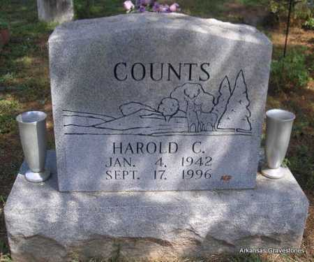 COUNTS, HAROLD C  (2ND. STONE) - Montgomery County, Arkansas   HAROLD C  (2ND. STONE) COUNTS - Arkansas Gravestone Photos