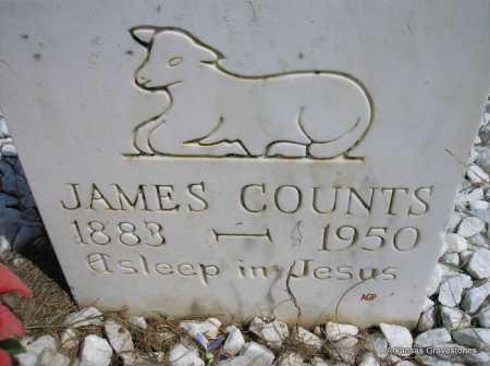 COUNTS, JAMES - Montgomery County, Arkansas   JAMES COUNTS - Arkansas Gravestone Photos