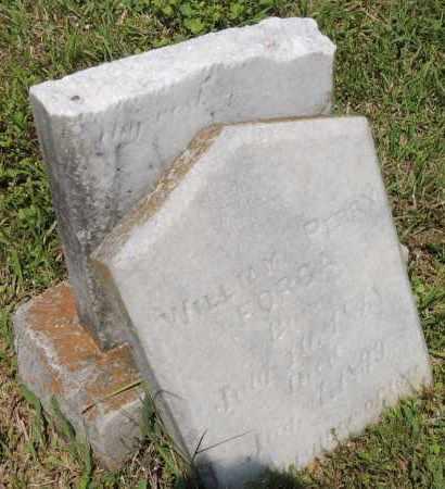 FORGA, WILL PERRY - Montgomery County, Arkansas   WILL PERRY FORGA - Arkansas Gravestone Photos