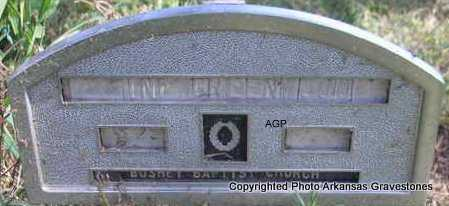 GREENWOOD, INFANT - Montgomery County, Arkansas | INFANT GREENWOOD - Arkansas Gravestone Photos