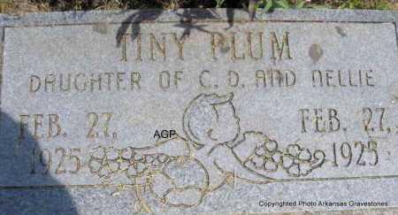 PLUM, TINY - Montgomery County, Arkansas | TINY PLUM - Arkansas Gravestone Photos